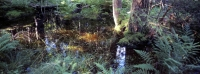 Nordskogen22f-